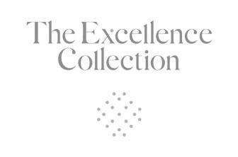 b-n-logo-excellence