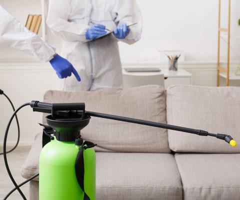 como-limpiar-tapiceria-sofa